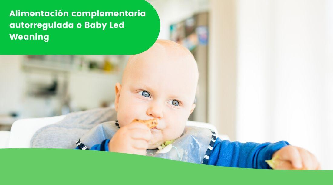Alimentación complementaria autorregulada o Baby Led Weaning (BLW)